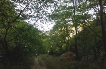 Marathon nature