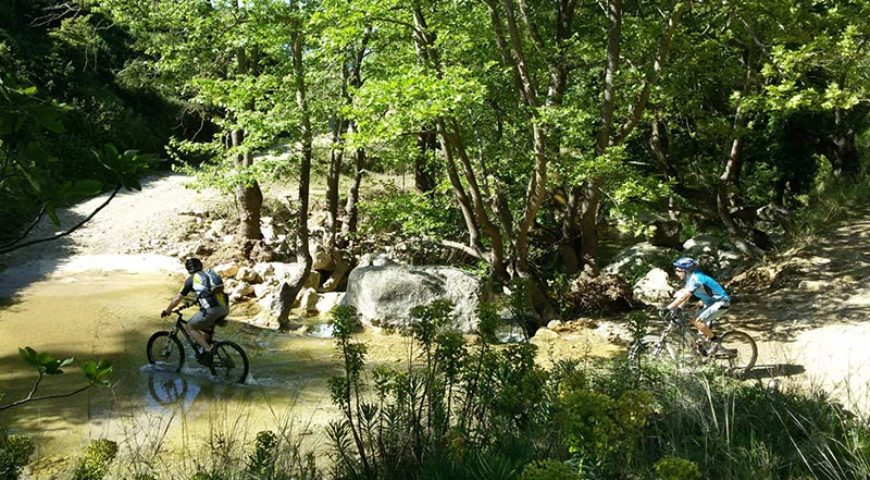 Marathon cycling in nature A
