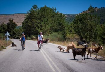 Doxa Lake cycling with the goats