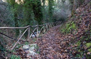 Path to Mylokanalo